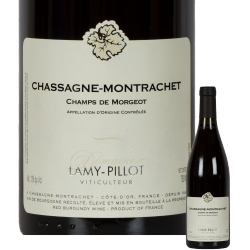 Chassagne Montrachet Champs de Morgeot